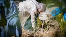 La reina Sofía se suma a una recogida de residuos para proteger la naturaleza