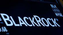 BlackRock exec: Climate risk is investment risk