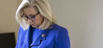 Is Liz Cheney playing 'the long game' as a GOP outcast?