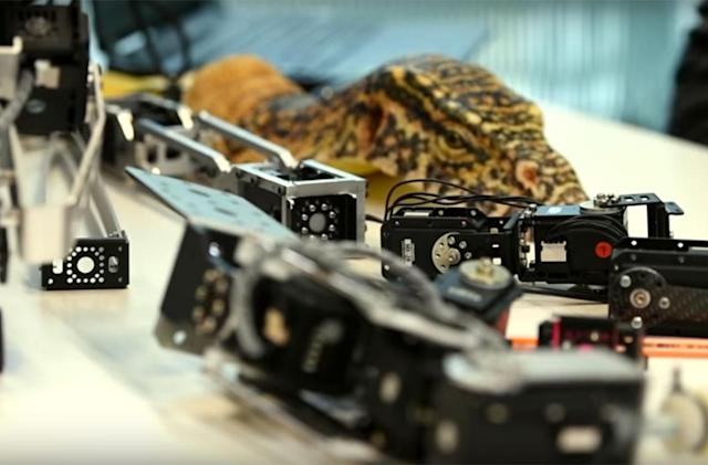 Robo-reptiles spy on their flesh-and-blood counterparts
