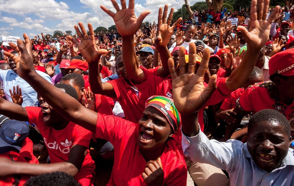 More than 2,000 supporters joined the anti-Mugabe march through central Harare (AFP Photo/Jekesai Njikizana )