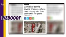 Budweiser Employee Admits to Peeing in Beer Tank? No, It's Satire