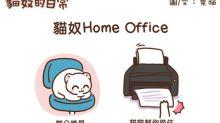 [貓奴的日常]貓奴的Home Office