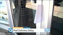 Oakdale Business Owners Claim They Received No Mail In Nearly A Year