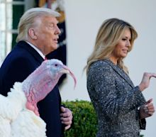 Trump is forgoing legal advice and instead listening to friends, TV hosts, and relatives on who to pardon, report says
