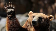 Morgan Stanley equity strategist warns clients to stop yawning at his bearish call and get defensive