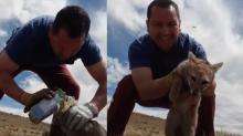 La buena acción del día: Salvó a un zorro de morir asfixiado por dos cajas