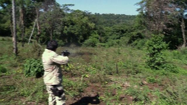 Paraguay - a drug trafficker's paradise?