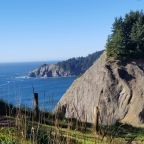 Oregon man falls to his death while posing in tree on oceanside cliff