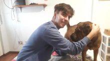 L'intervista a Mattia, il 19enne finito in terapia intensiva per coronavirus