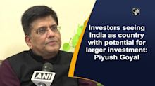 Investors seeing India as country with potential for larger investment: Piyush Goyal