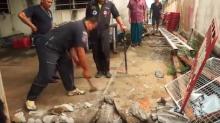 Sintió una vibración en el suelo, rompió el concreto y encontró una serpiente que intentaba digerir un lagarto