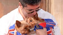 Simon Cowell reveals he is spending £180k to clone his dogs