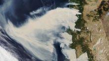 États-Unis: ces images satellites témoignent de l'ampleur des incendies sur la côte ouest