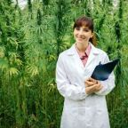 Top 5 Cannabis Stocks To Buy Now