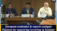 European academics and experts castigate Pakistan for sponsoring terrorism in Kashmir