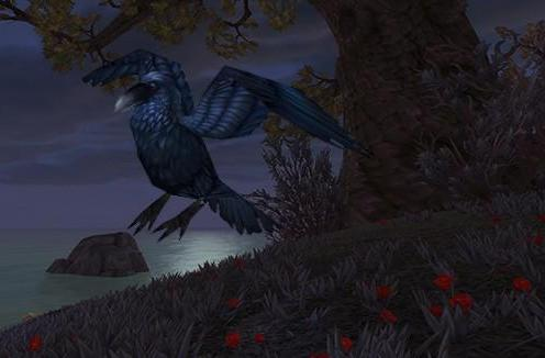 Capture a Crow when the Darkmoon Faire's in town
