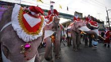 Santa rides elephants to Thai town, bearing gifts of face masks