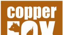 Copper Fox Announces IP Survey for Mineral Mountain Copper Project
