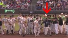 Pitcher uses baseball as weapon during wild minor league brawl