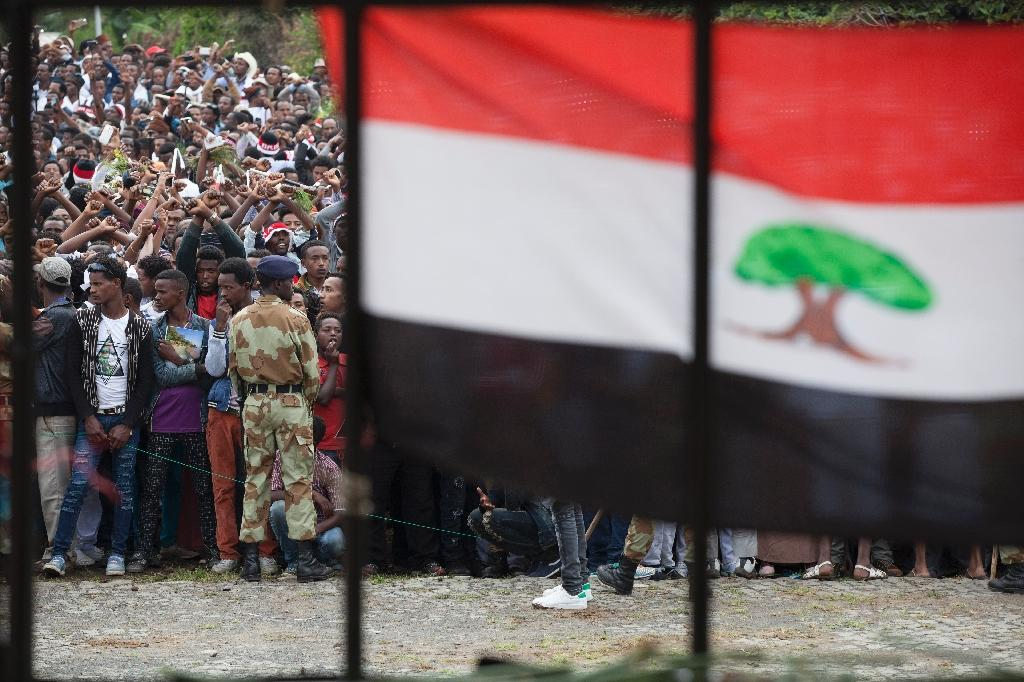 Ethiopia is divided into ethnically-based federal regions and the Oromo and Somali people have for years argued over who controls arable land along their shared border