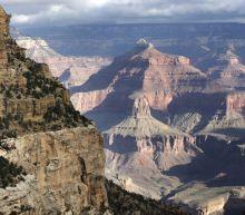 Grand Canyon National Park closes to visitors amid pandemic