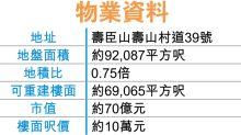 南區壽臣山屋地標售 估值近70億