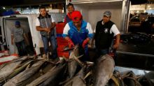 Mexico loses 10-year WTO battle over U.S. tuna labelling
