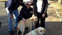 Pets, pet owners in need after Sandy
