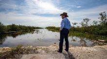 Removal of old Tamiami Trail roadbed opens new doors for Everglades revival