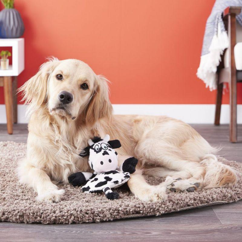 This Hear Doggy Flatty toy is only audible to pups — and it's on sale for just $8