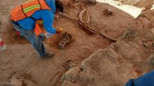 Bones of approximately 60 mammoths discovered in Mexico