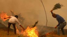 Why India and Nepal's forest fires are worrying scientists