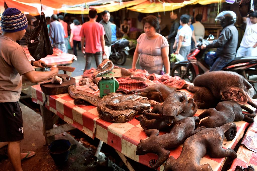 A vendor offers various exotic animals, including pythons and crested black macaques, to his customers at Tomohon market in northern Sulawesi (AFP Photo/Bay Ismoyo)