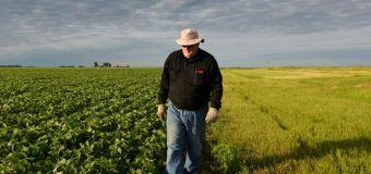 Farmers feeling the sting of Trump trade wars