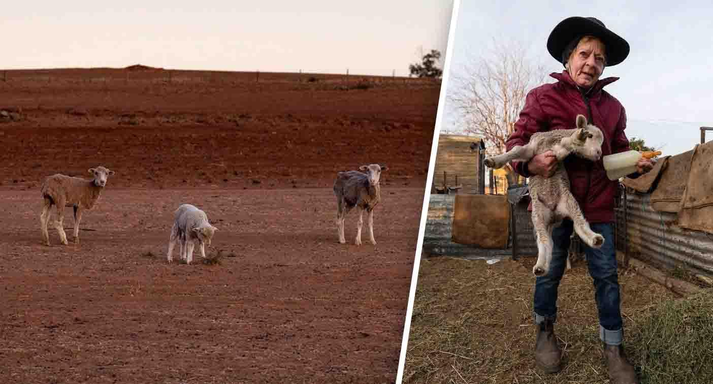 Amazing response to interview with 'salt of the earth' family crippled by drought