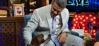 Andy Cohen rehomed dog after 'incident' with son