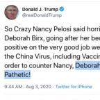 Trump labels Birx 'pathetic' in tweet