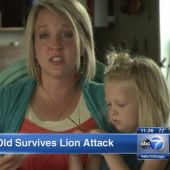 4-year-old rescued after mountain lion tries to snatch her from Idaho campground