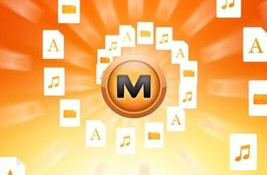 Carpathia wants to delete orphaned Megaupload data, pay the bills