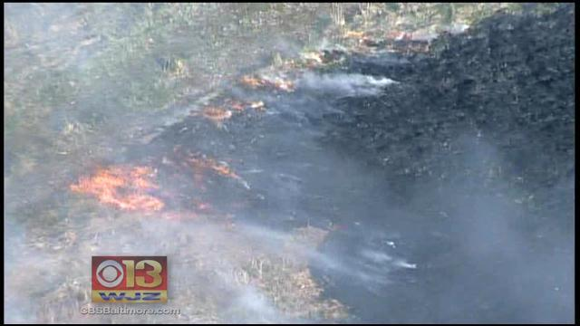 Warm Weather And Gusty Winds Make Md. Conditions Ripe For Brush Fires