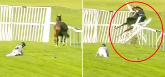 Horse ditches jockey and crashes through fence