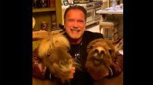 "El mensaje de calma de Arnold Schwarzenegger abrazando a sus burros: ""Nos quedamos en casa"""