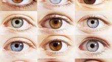 Apparently, Everyone Has Brown Eyes