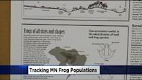 DNR Begins Annual Frog Calling Survey For Sounds Of Spring