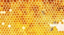 The 14 Best Bee Beauty Products