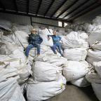 Swap the crop? New York hemp farmers eager to grow marijuana