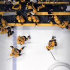 Predators shoot down Ducks to reach Stanley Cup Finals