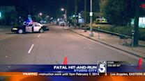 Two Fatal Hit and Runs Only Hours Apart