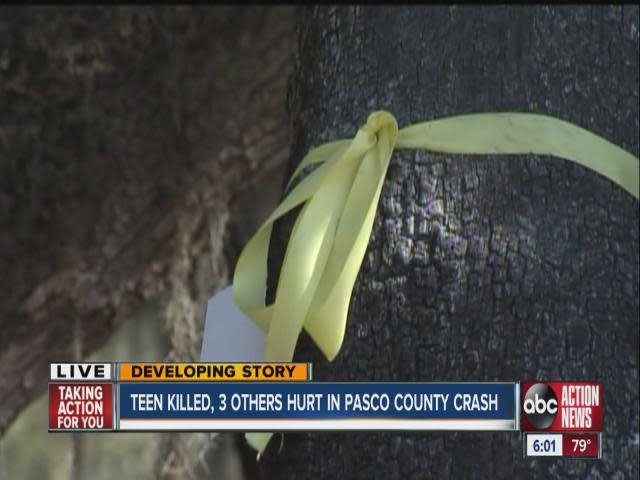 Teen killed 3 injured in Pasco County Crash  [Video]